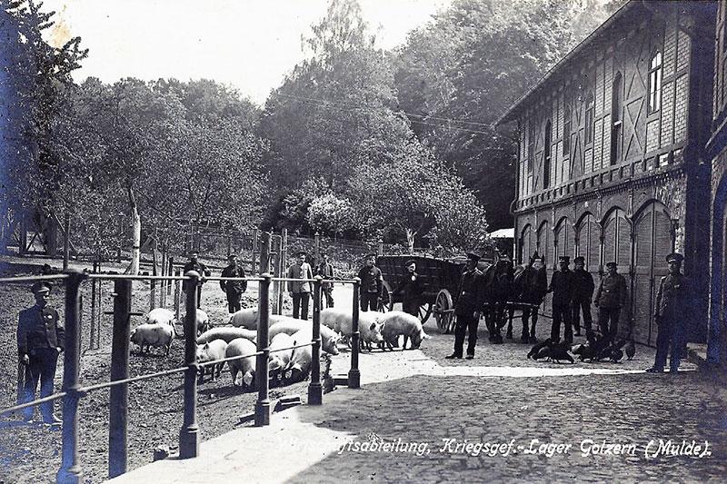 Das Kriegsgefangenenlager Golzern von August 1914 bis März 1917
